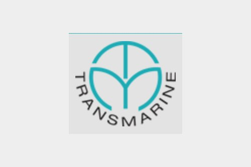 Transmarine Services India Pvt Ltd